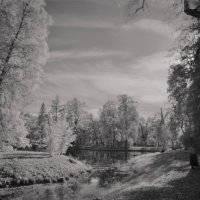 Осень в Царском селе. Александровский парк. :: Харис Шахмаметьев