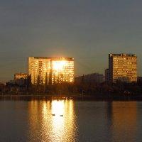 И никто не платит за свет! :: Андрей Лукьянов