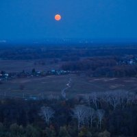 Красная Луна :: Zifa Dimitrieva