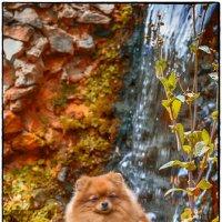 Ася и водопад :: Leo Alex Photographer