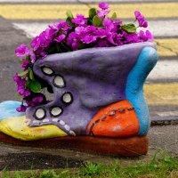 Ароматный ботинок :: Игорь Сикорский