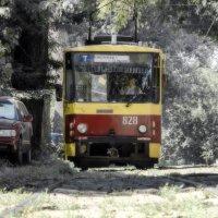 Трамвай 7-чка :: Денис Пшеничный
