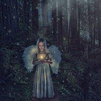 В лесу :: Ксения ПЕН