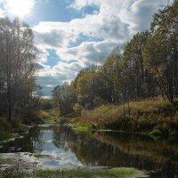 На берегах реки Серёжа (2). :: Николай Масляев