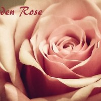 garden Rose :: Natalia SabliNA
