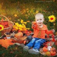 осень :: Оксана Чепурнаева