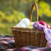 на пикник всей семьей :: Оксана Гунина