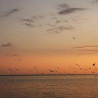 Sunset :: Жанна Уланова