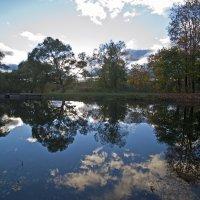 Осень в Луговом парке. :: Владимир