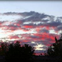 Очередной закат в Пскове... :: Fededuard Винтанюк
