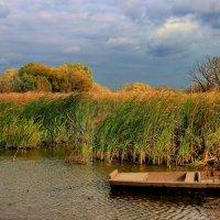 Причалил к берегу октябрь... :: Лесо-Вед (Баранов)