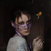 Преданность идеалу :: ann nickolskaya