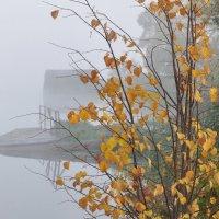 Осень, туман :: Иван Торопов