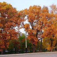 Осень золотая :: Виктория Коплык