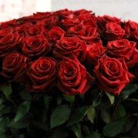 букет или розы для :: Олег Лукьянов