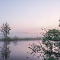 Загадочный пейзаж! :: Борис Кононов