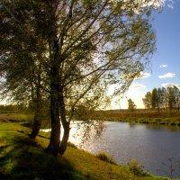 Осенний ветерок :: Вячеслав Минаев