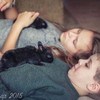 Кролики :: Vita Farrar