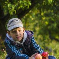 полезные дары осени :: карина полякова