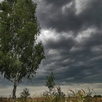 конец лета :: sergej-smv
