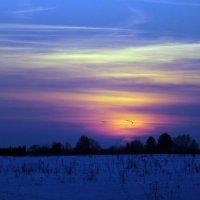 На закате :: Зоя Мишина