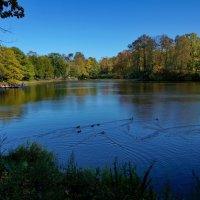 на озере.............. :: Валентина Папилова