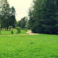 Зелень :: Анна Бойко