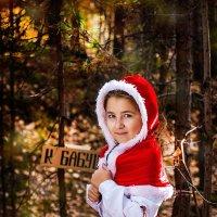 Красная Шапочка :: Фотостудия Объективность