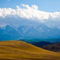Потрясающий Алтай :: Оксана Губайдулина