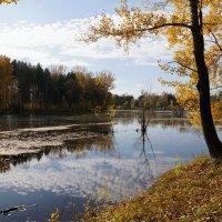 Старый пруд :: Наталия Григорьева