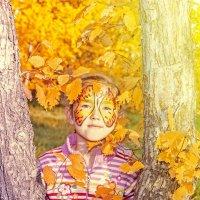 В ярких красках осени :: Вадим Куликов