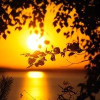Волго на закате :: Надежда Келембет