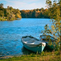 Озеро в Кузьминском лесопарке. Москва :: Ксения Базарова