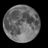 Луна :: Максим Павлюченко