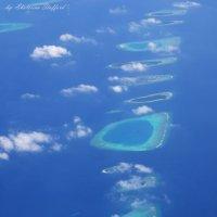 Мальдивы 1 :: Ekaterina Stafford