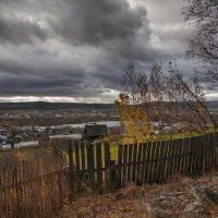 Последние листья осени :: vladimir