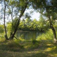 Прогулка по Усманке :: Тамрико Дат