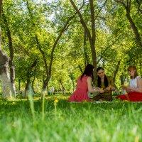 Три девицы... :: Дмитрий Сахнов