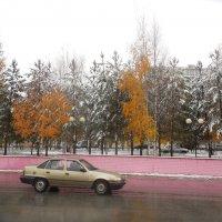 Вот и  зима нагрянула, Север, однако!!! :: Наталья Пендюк Пендюк