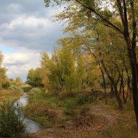 Осенний рай :: Dr. Olver  ( ОлегЪ )