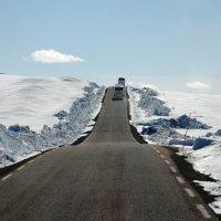 Дорога на Нордкап :: Tatiana Belyatskaya