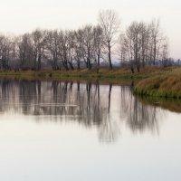 Протока Талая. Осень :: Виктор Четошников