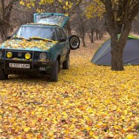 Поездка в осень :: Александр Грищенко