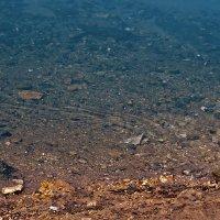 Цвет воды Красного Ключа осенью :: Татьяна Губина