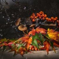 осень в сундучке :: Olena