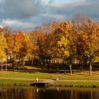 парк :: Анна Семенова