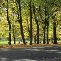 Осень ... :: Агриппина