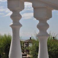 Взгляд из далека.... :: Tatyana Kuchina