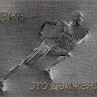 Жизнь зто движение. :: Анатолий. Chesnavik.