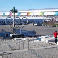 Олимпийский парк. У вокзала :: Нина Бутко